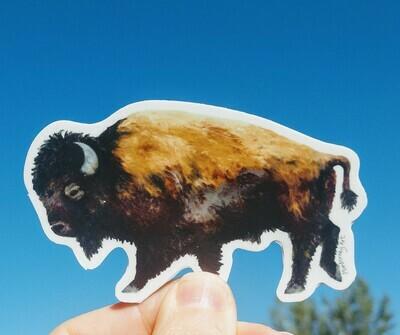 Bison Sticker!