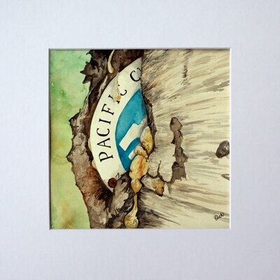 PCT Blaze Watercolor Painting