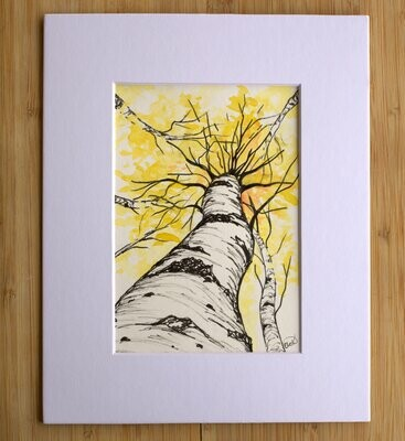 Aspens: Watercolor and Ink Art