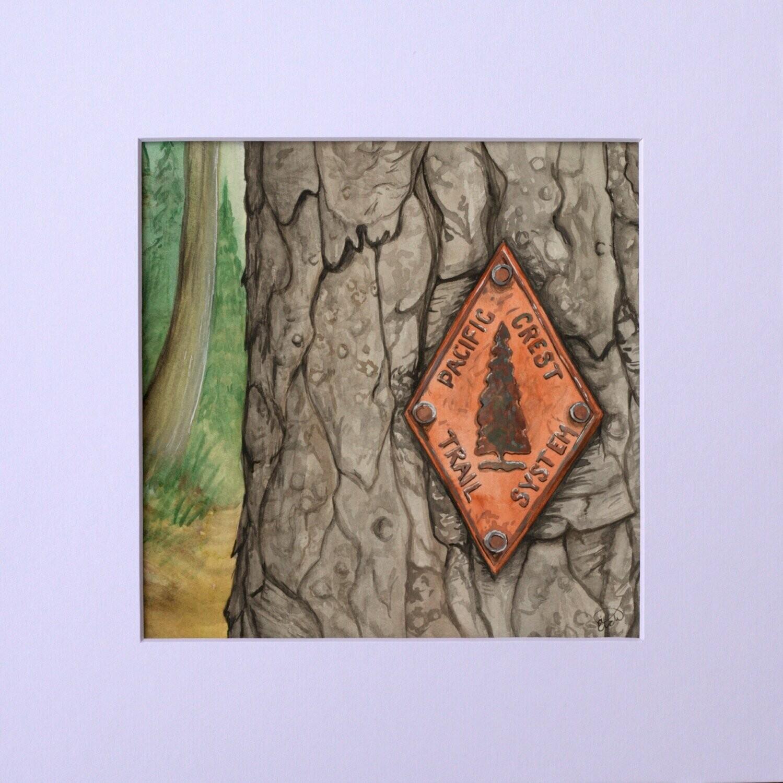 PCT Blaze Watercolor Painting