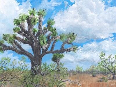 PRINT: Joshua Tree