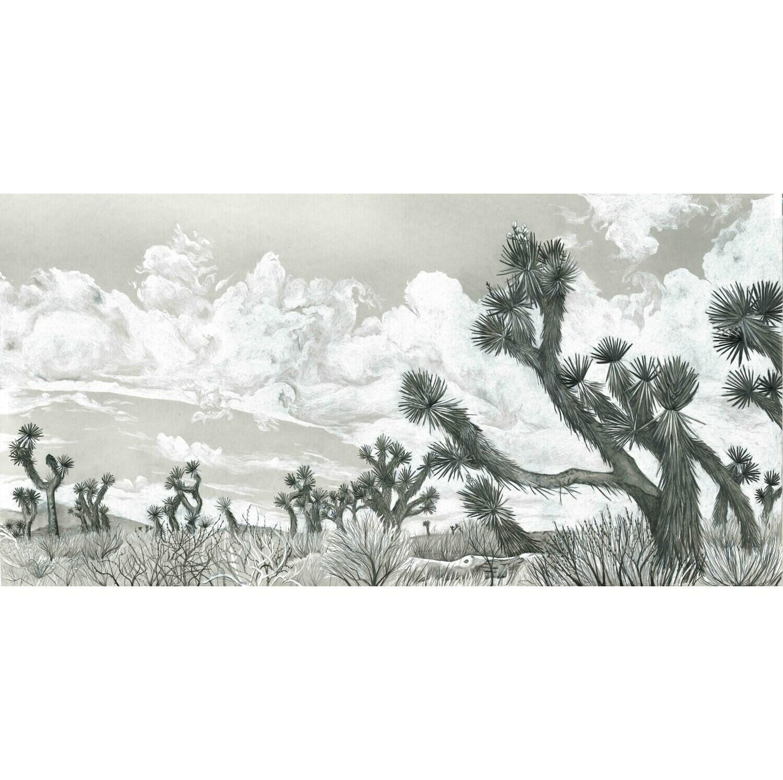 Print: Desert Giants