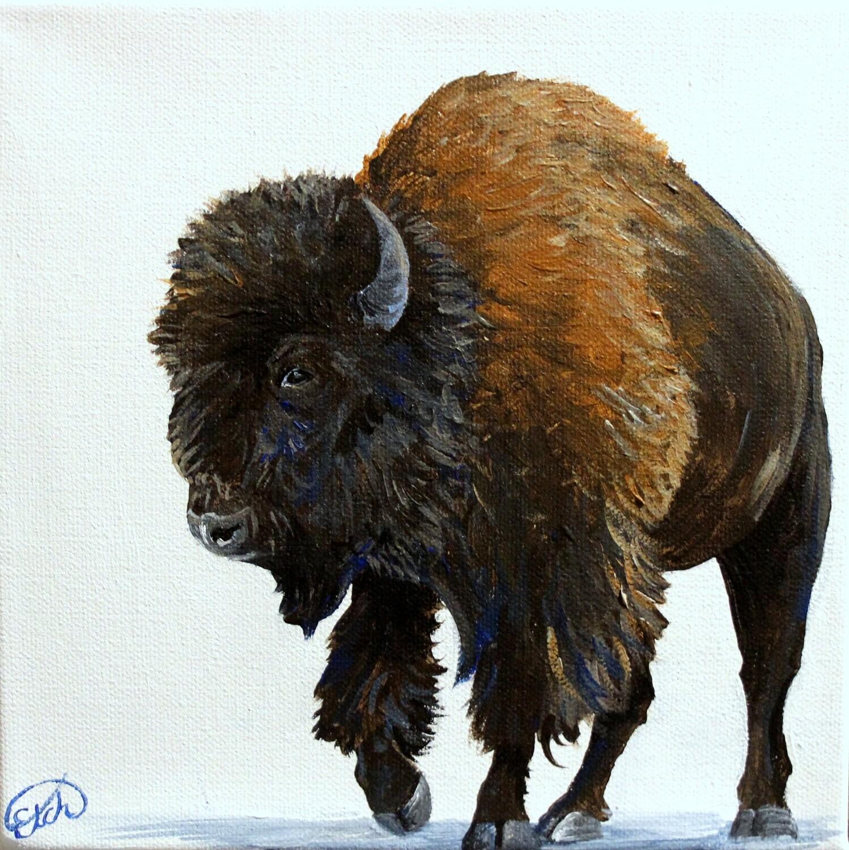 Bull Bison Mini!