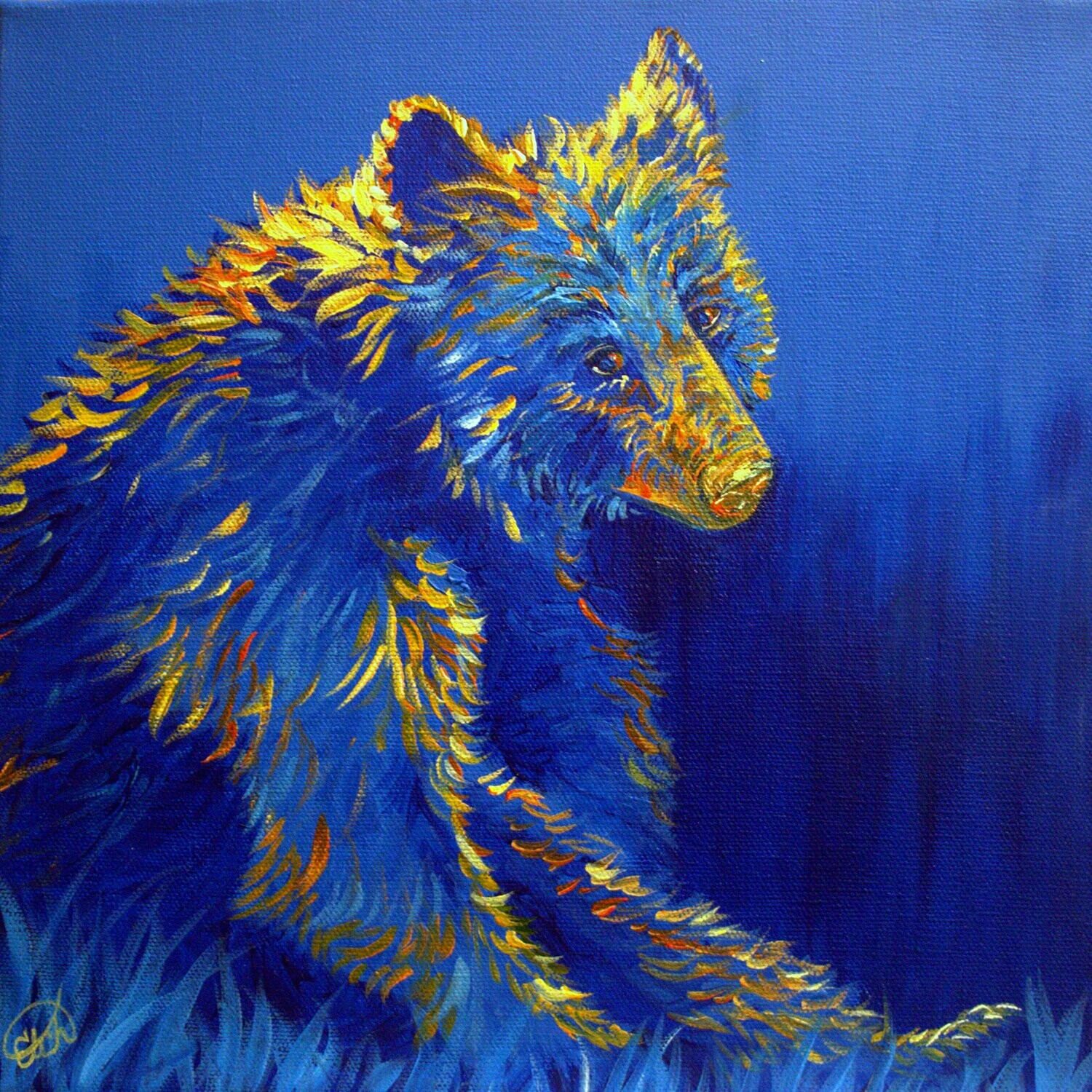 "The Look of a Bear 12""x12"""