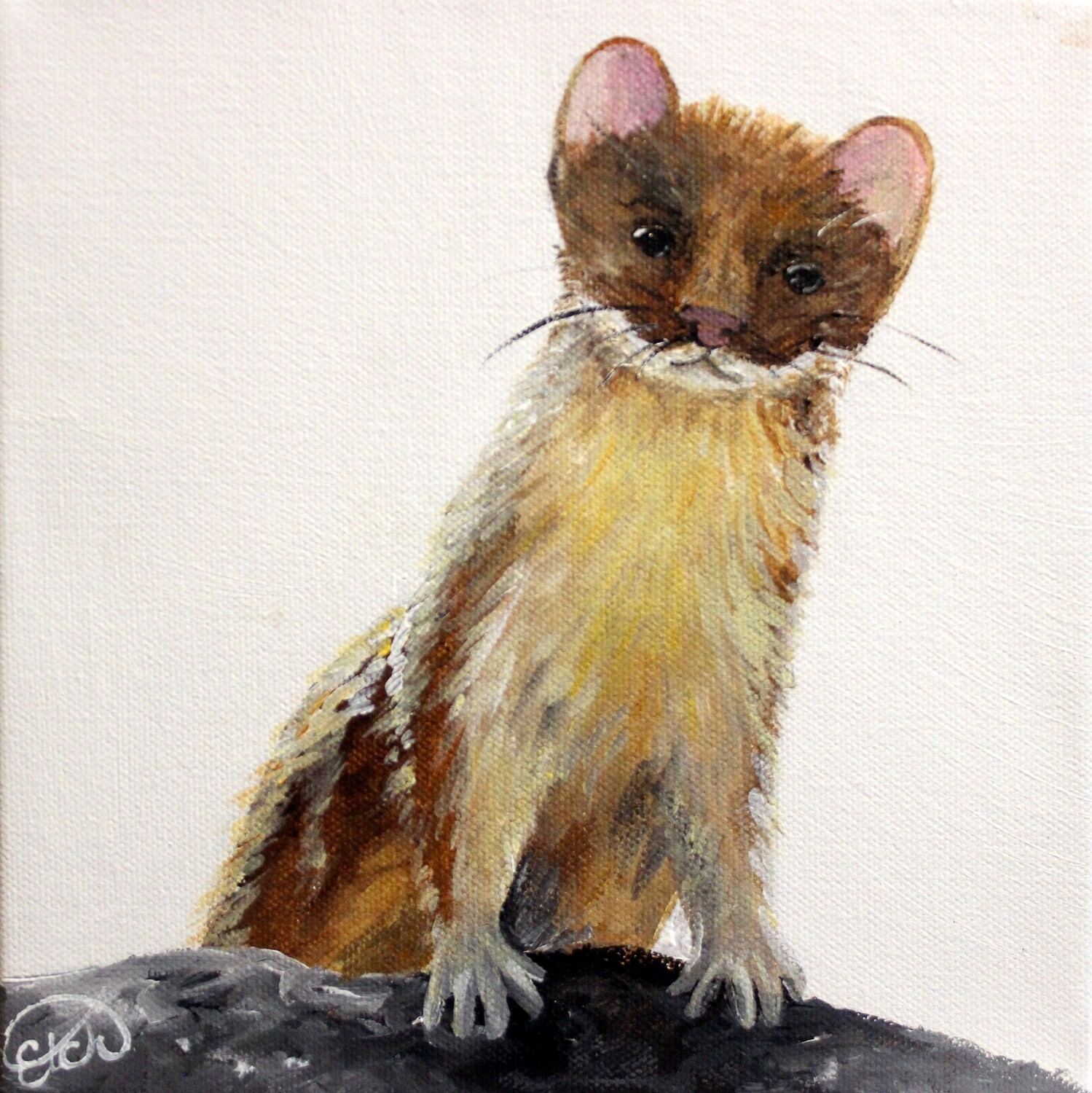 Available at ART FOCUS GALLERY: Weasel Mini!