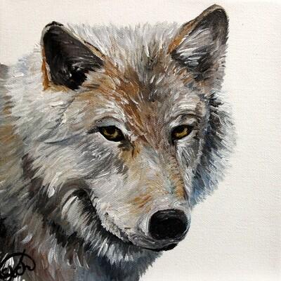 Wolf Mini!