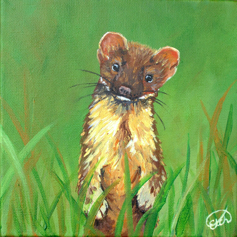 Weasel Mini!