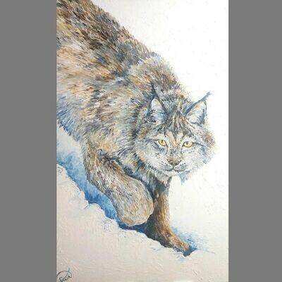 Winter Prowler (30