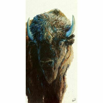 Bison, bison (24