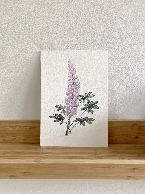 CA Native Purple Lupine