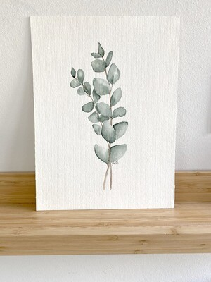 Eucalyptus (Large)