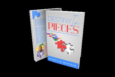 Destiny in Pieces