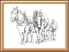 Shire Horses Digi Stamp