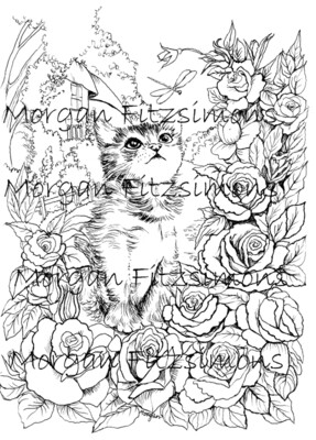 Kitten and Dragonfly Digi Stamp
