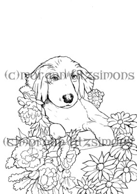 Golden Retiever Digi Stamp