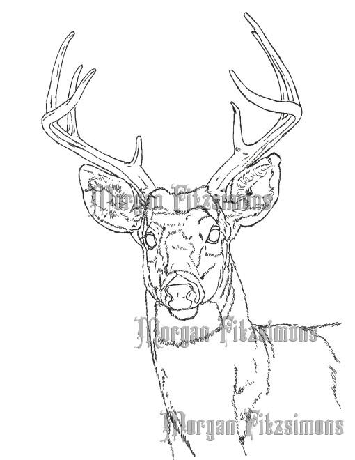 Deer 1 - Digital Stamp