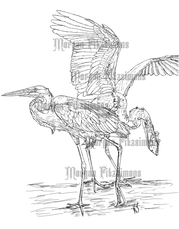 Bird Heron Combo - Digital Stamp
