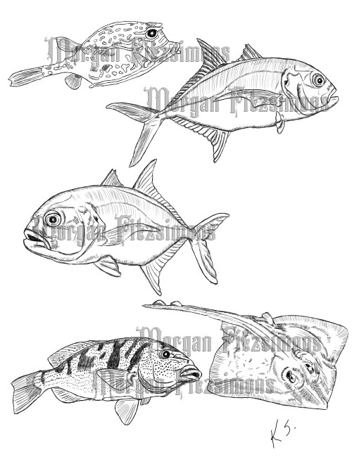 Fish Combo 1 - Digital Stamp