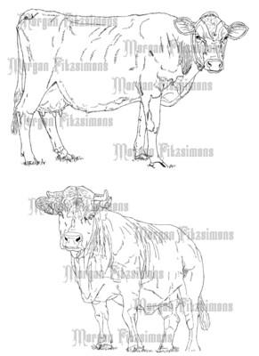 Cows - Digital Stamp