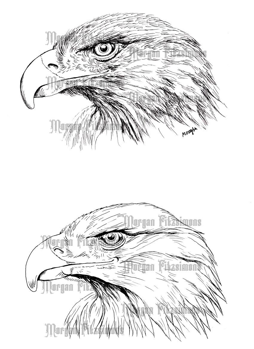 Eagles - Digital Stamp