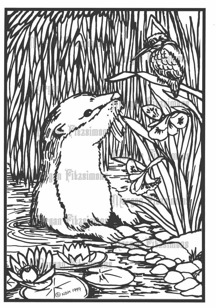 Otter - Digital Stamp