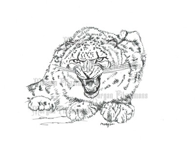 Angry Leopard - Digital Stamp