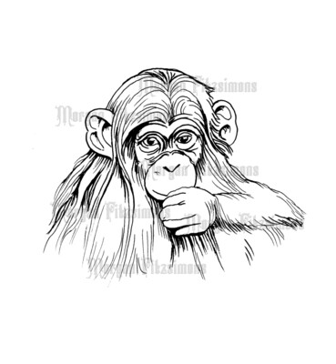 Little Chimp - Digital Stamp