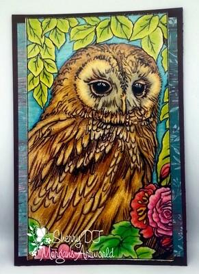 My Owl - Digital Stamp