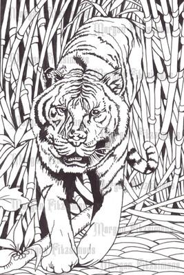 Tiger - Digital Stamp