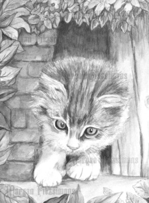 Kitten 4 Greyscale - Digital Stamp