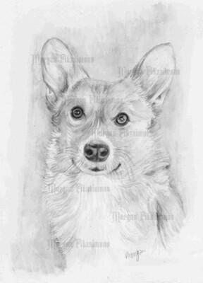 Dog Greyscale - Digital Stamp