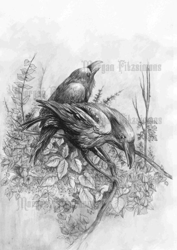 Ravens Greyscale - Digital Stamp