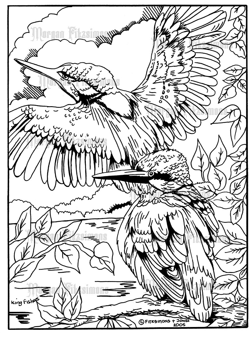 Kingfishers - Digital Stamp