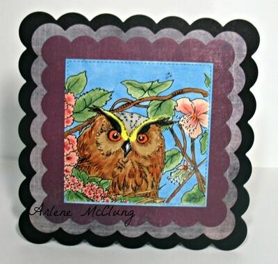 Owl 2 - Digital Stamp