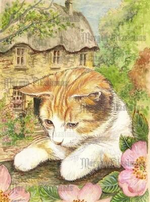 Kitten 2 Pre-Coloured - Digital Stamps