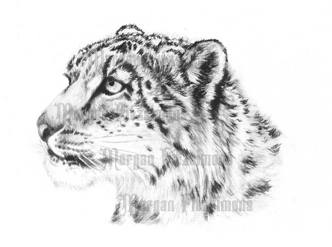 Jaguar In Snow Greyscale - Digital Stamp