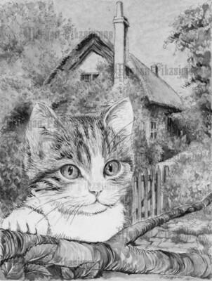 Kitten 6 Greyscale - Digital Stamp