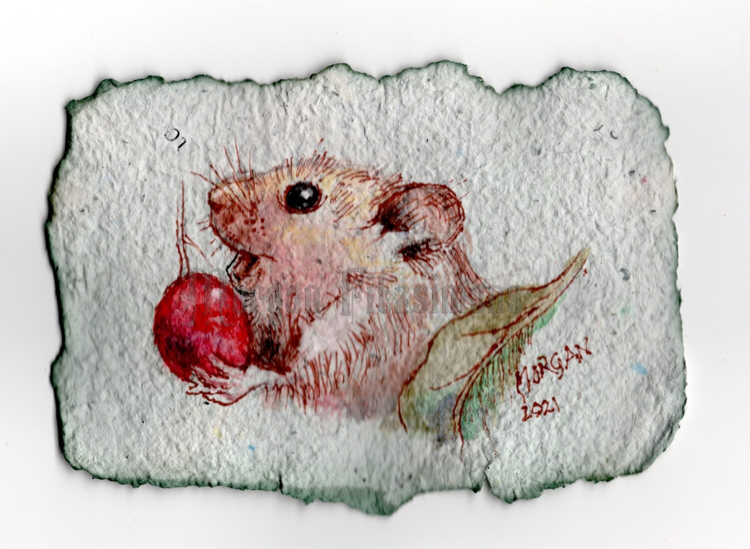 Go Wild Collection: Happy Woodmouse
