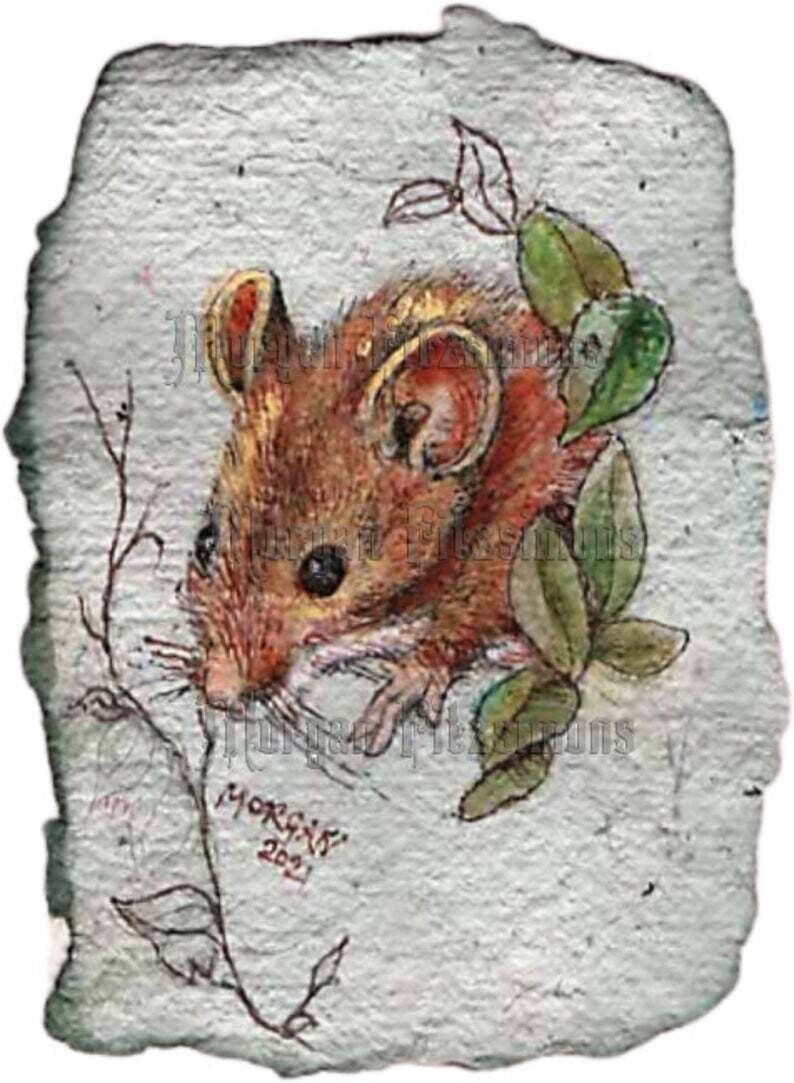 Go Wild Collection: Wood Mouse