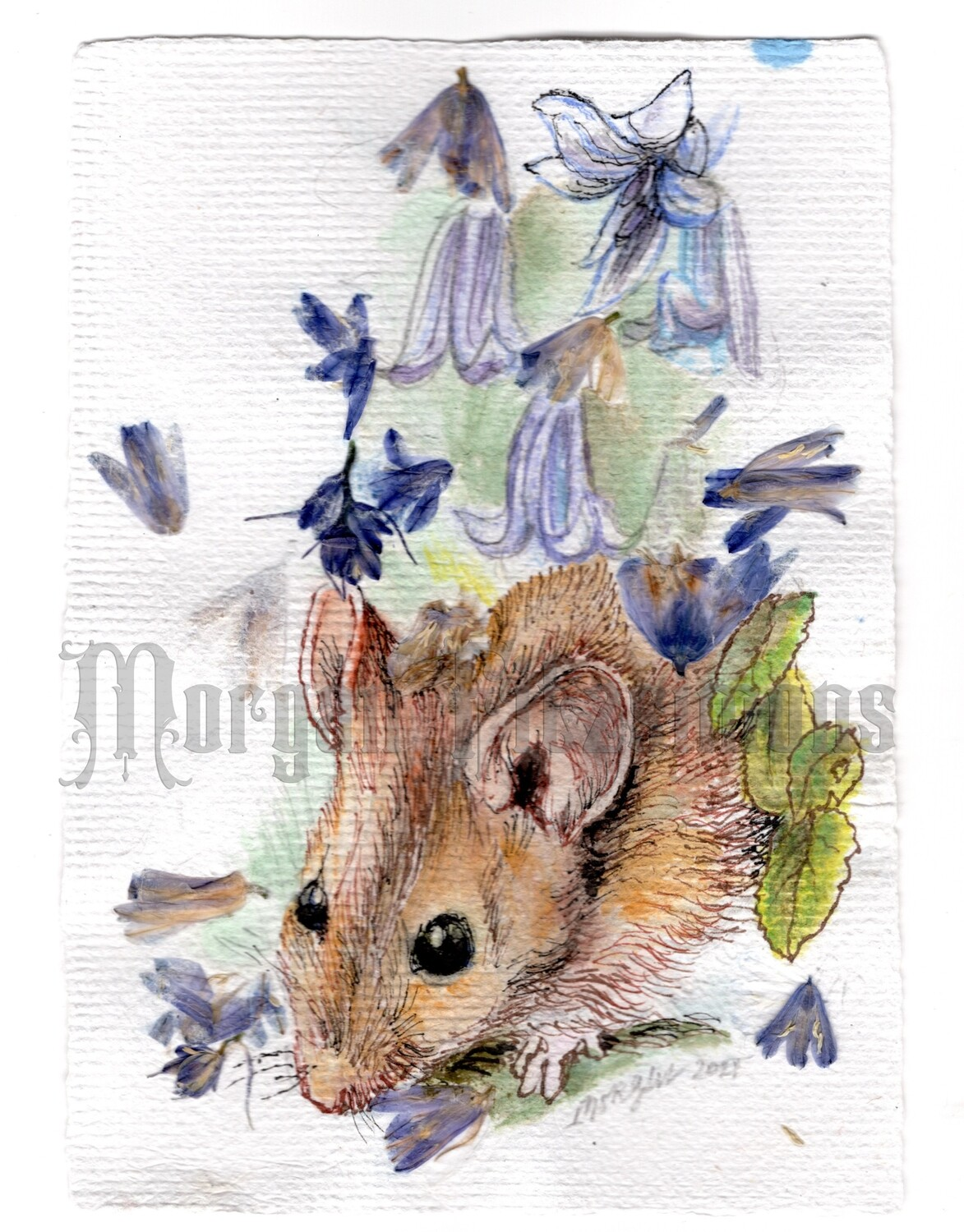 GO Wild Collection: Mouse in the Bluebells