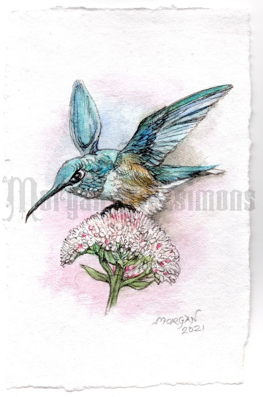 Go Wild Collection: Blue Hummingbird