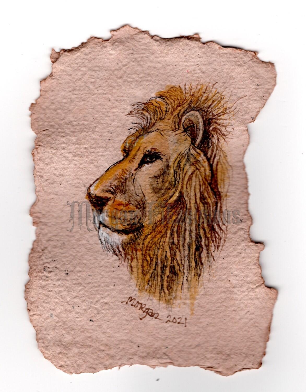 Portrait of the Lion of Judah WF
