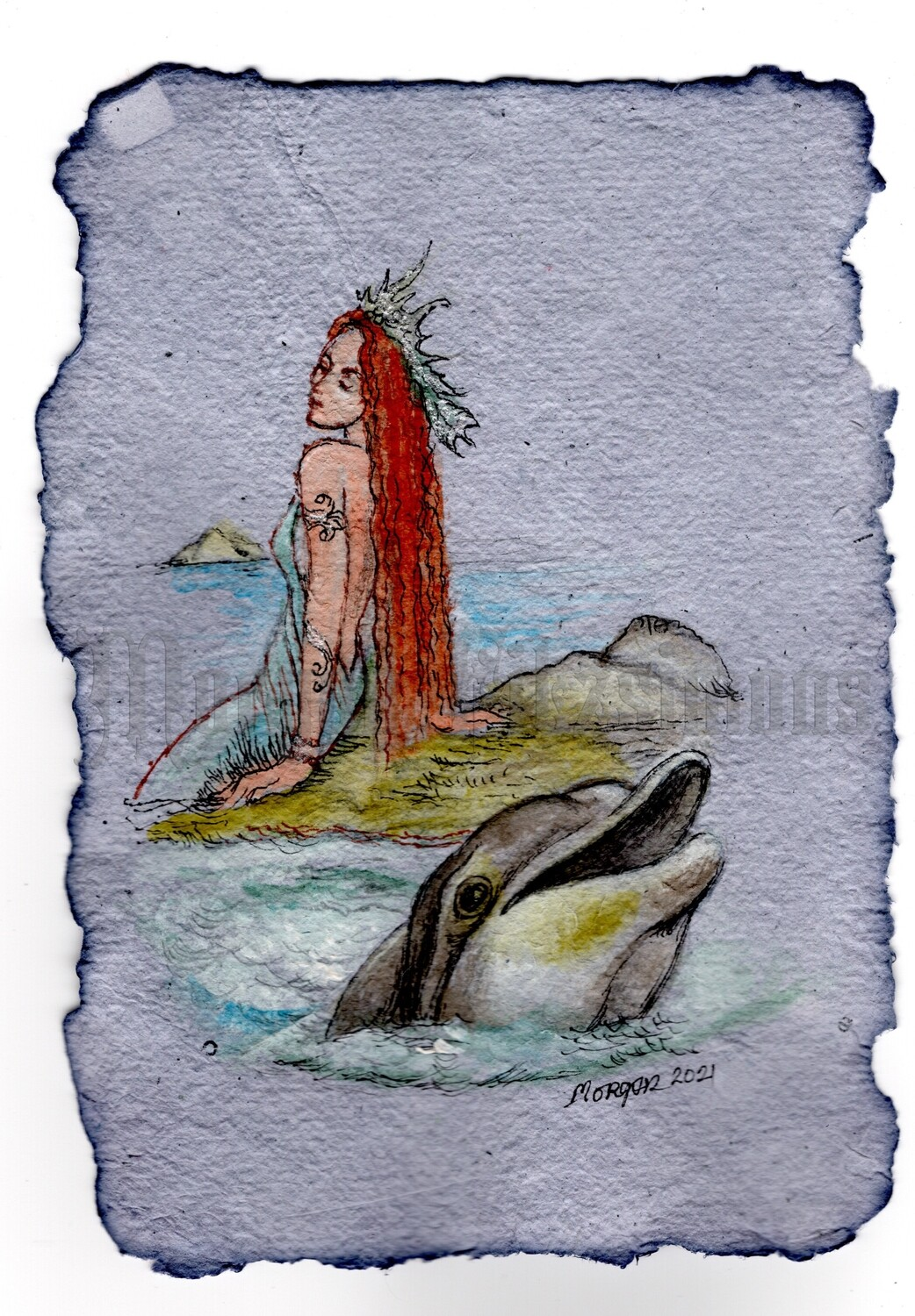 Go Wild Imagine Collection: Selkie and the Dolphin