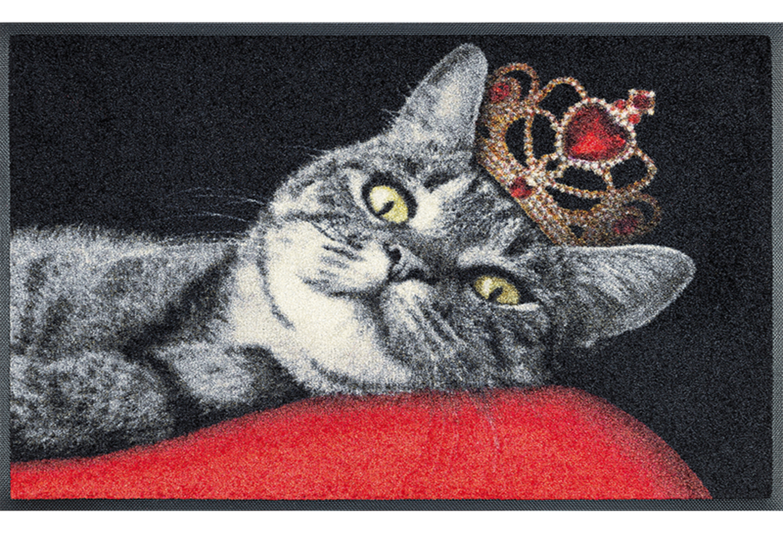 Wash+dry mat Royal Cat 50 x 75 cm