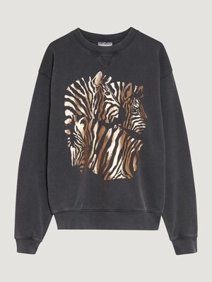 Sweater Zebra