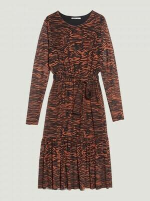 Spicy Zebra Dress