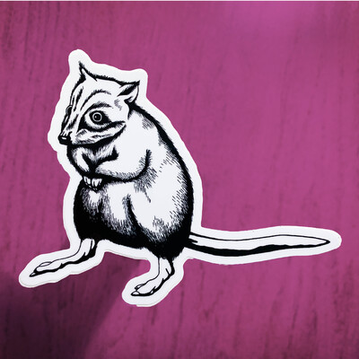 Endangered Sticker –Bettong (Limited Edition)