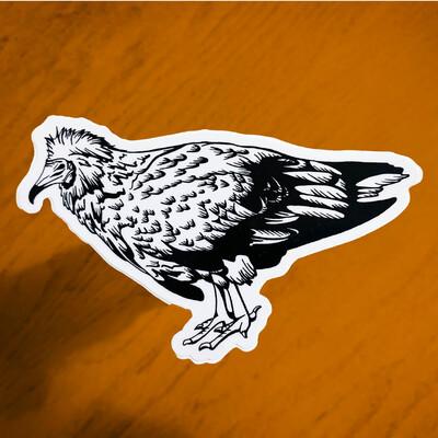 Endangered Sticker – Vulture (Limited Edition)