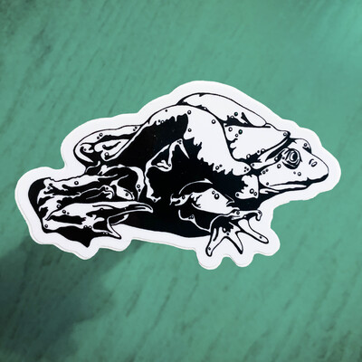Endangered Sticker – Water Frog (Limited Edition)