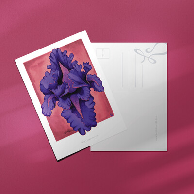 "Purple Iris 4x6"" Postcard"